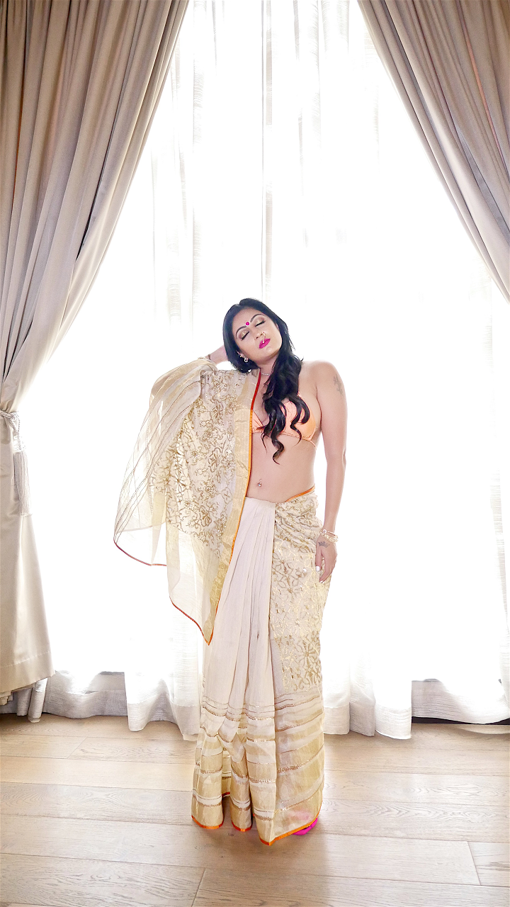 Sonal Saree Lookbook 2