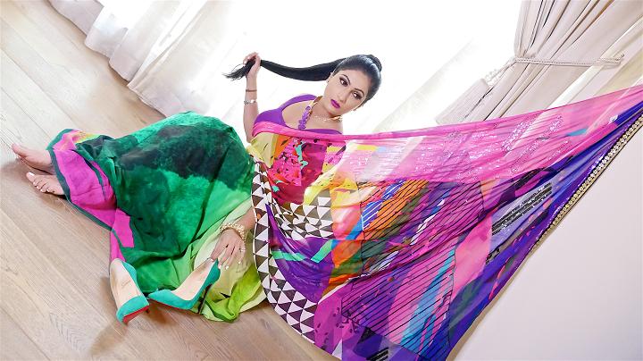 Sonal Saree Lookbook 4